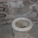 ESP Toilet